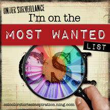 CSI Most Wanted Badge