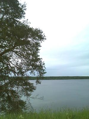 Озеро в Родионово