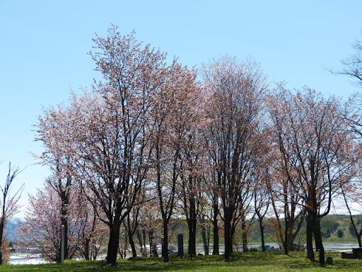 金比羅公園