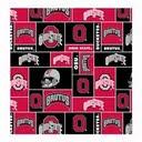 University of Ohio State Cloth Trainer