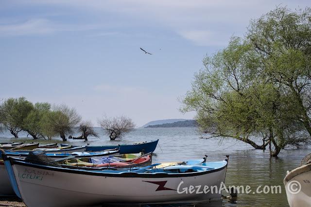 Gölyazı'dan Uluabat Gölü manzarası