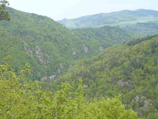 La vallée de l'Allier vue depuis le promontoire où nous avons fait la pause