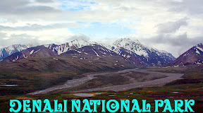 Click for our Denali National Park  travel pics