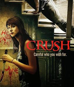 Mê Dại - Crush poster