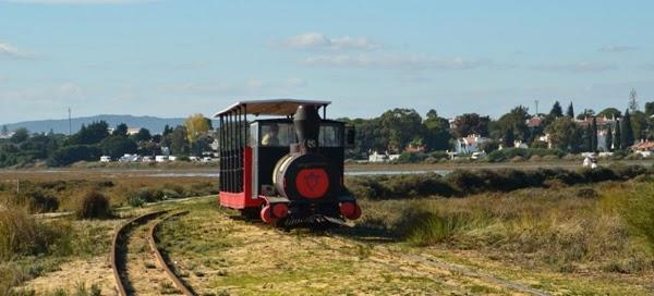 Comboio Praia do Barril - Férias em Tavira