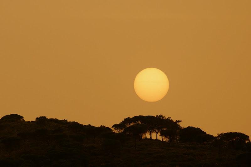Sol de Abril