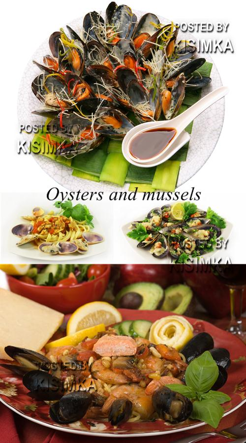 Stock Photo: Oysters and mussels