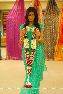 Actress Genelia in Saree Photos