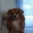 rudy avila avatar image