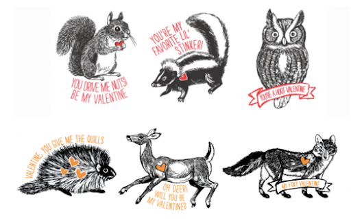 These cute animals are a collaboration between Freshly Picked (http://freshly-picked.com/), The Alison Show (http://www.sheblogssheblogs.com/), and Fifth & Hazel (http://www.fifthandhazel.com/)