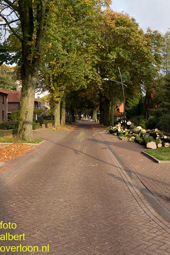 Bomen gekapt Museumlaan in overloon 20-10-2014 (42).jpg