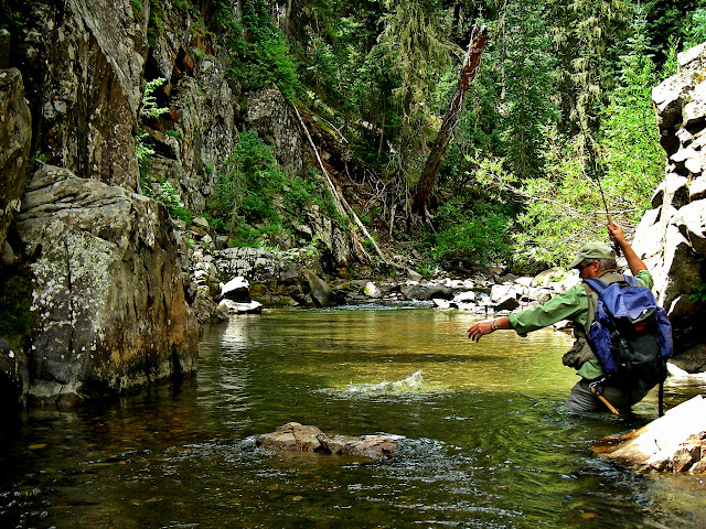 backcountry cutthroat trout fishing
