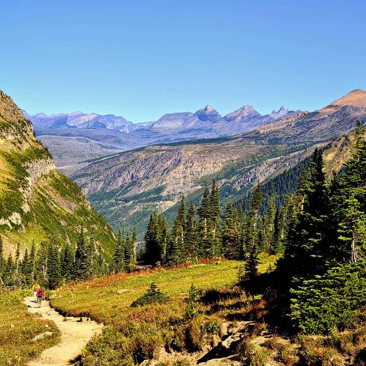 Highline Trail Glacier National Park (15 Best Hikes in the US).