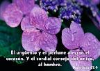 Proverbios 27.9