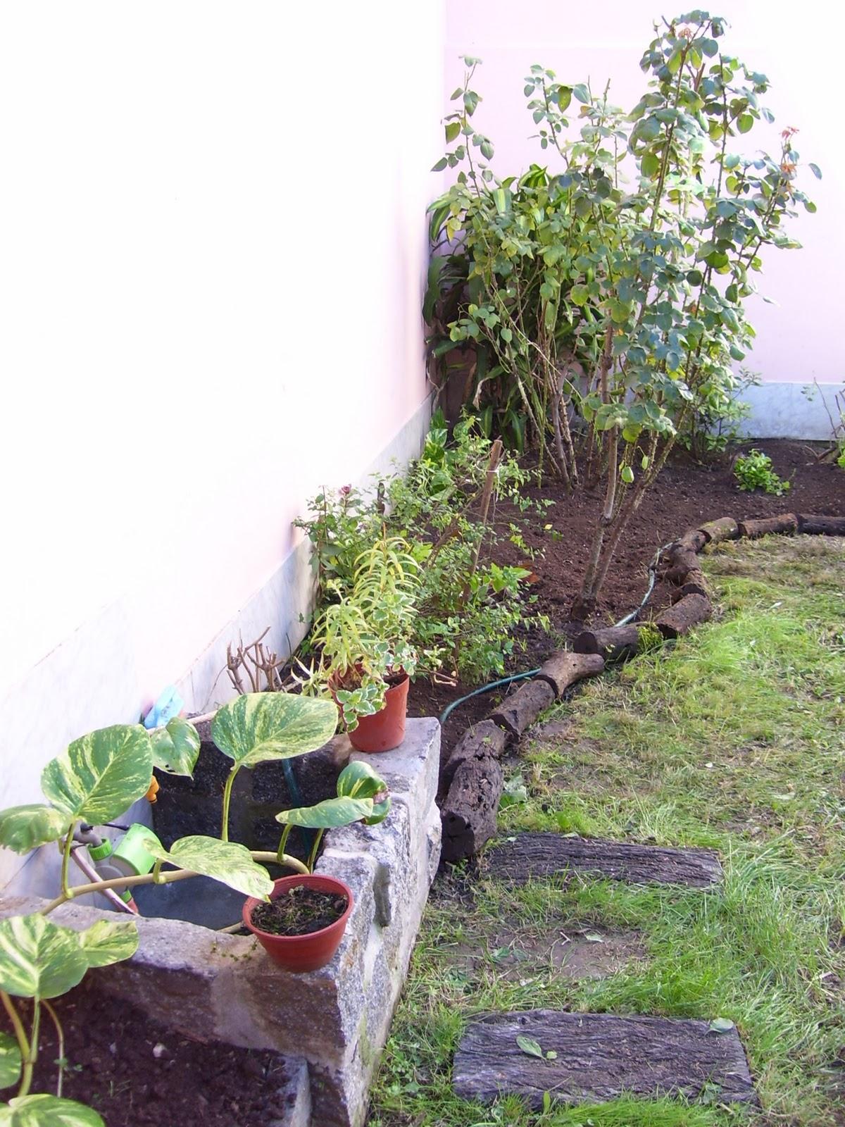 Jardineria Y Paisajismo En Gerenal Marzo 2011