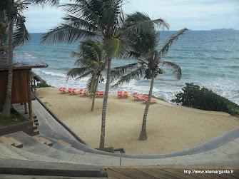 Ikin Isla Margarita