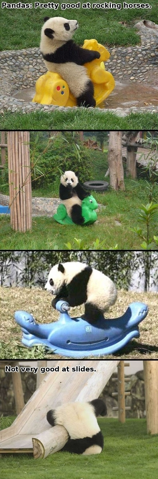 Pandas : Pretty Good On Horses, BUT..