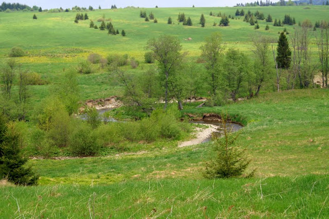 San, Bieszczadzki Park Narodowy, Bieszczady