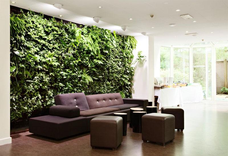 green walls decorating houseplants