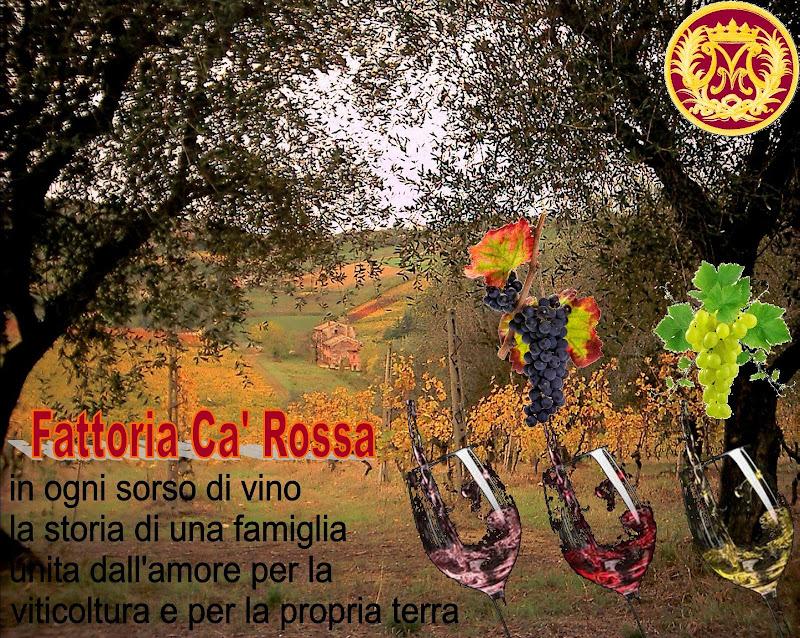Fattoria Ca' Rossa Di Masotti Massimo-3211