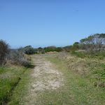Coastal Cemetery Trail near Botany Bay National Park (310499)