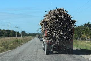 Nous traversons le Bélize, sur notre route plusieurs camions transportant des cannes à sucre