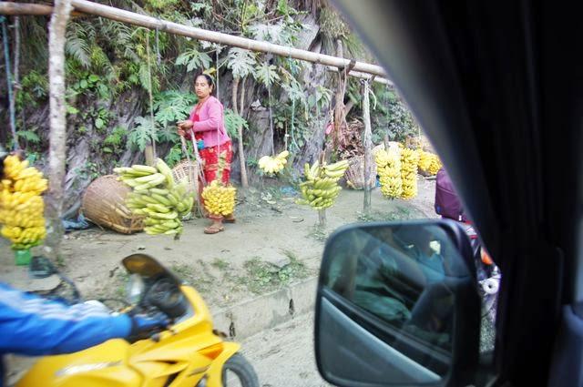 達人帶路-環遊世界-尼泊爾PoonHill健行-香蕉