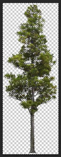 การกำหนดค่า Material ของต้นไม้แบบ 2D ให้มีความโปร่งใส Vraytree08