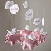 сонник свиньи