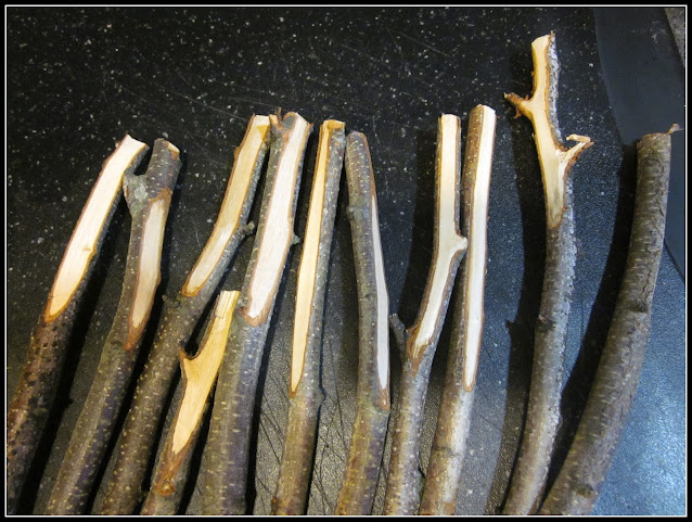 sticks with top shaved