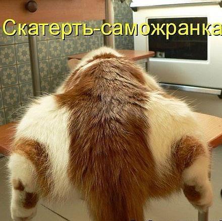 Sergey Nesterov Photo 9