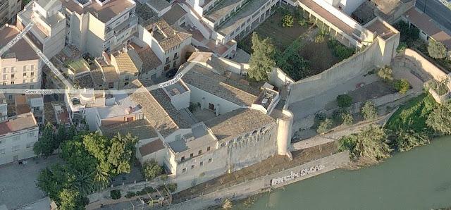 La casuarina s'aprecia al centre de la imatge, entre l'antic hospital i el convent de Santa Clara