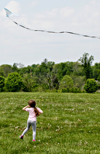 It was the perfect day for kite flying - warm, sunny, and just the right amount of wind