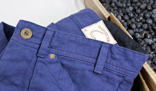 Blueberry Harvester Pants