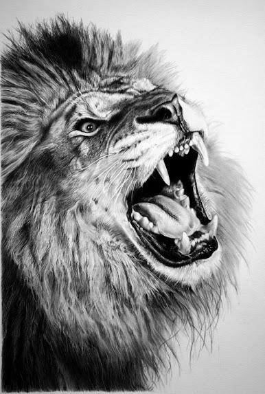 https://lh6.googleusercontent.com/-YSCYN75t-og/UHg5VDUuK0I/AAAAAAABfDI/Ov1gJ6NaciU/s573/pencil_lion_by_francoclun-d4y97gi.jpg