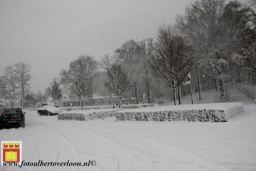 eerste sneeuwval in overloon 07-12-2012  (20).JPG