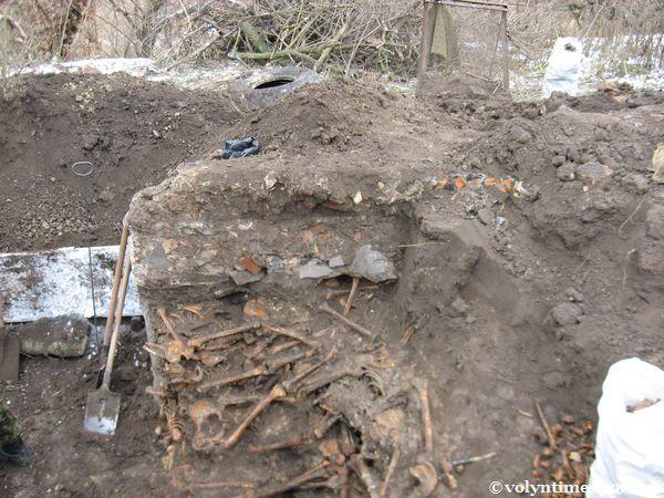 Бетонний фундамент свинарника стояв прямо на людських останках.