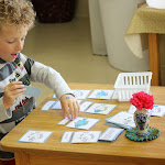 """This four-year-old boy is working with a set of Montessori three-part cards to learn the correct anatomical terms for the parts of a fish. Many of our preschool/kindergarten children are strong enough readers to progress from """"learning to read"""" to """"reading to learn"""", many years earlier than their counterparts in traditional schools."""