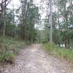Elvina Track near water (304622)