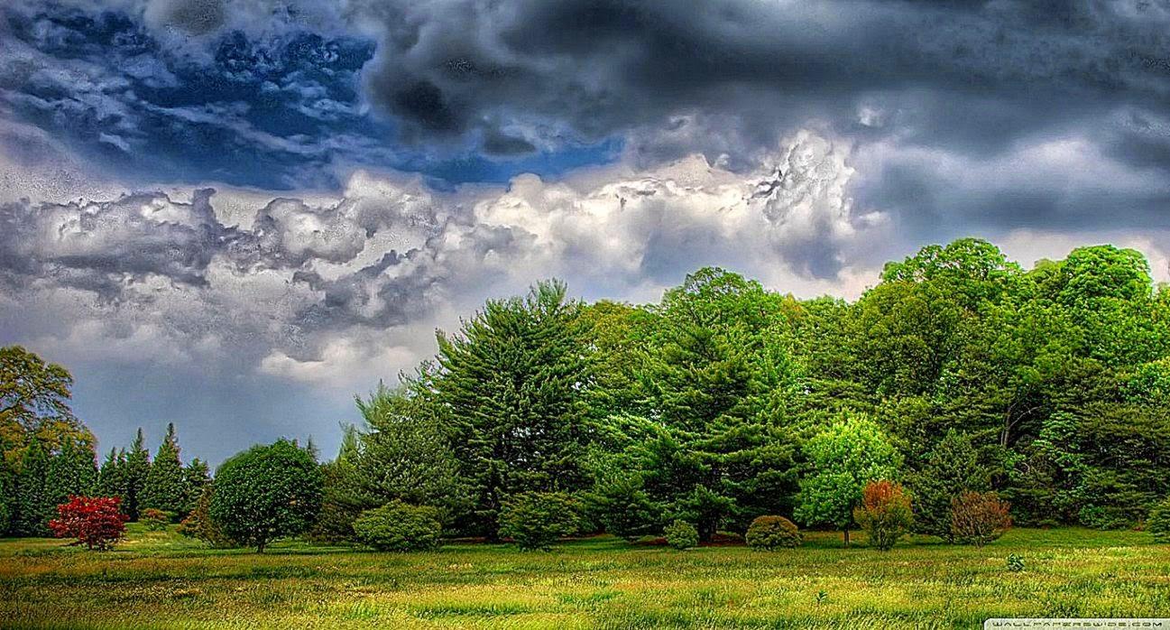 screensavers nature scenes | best free hd wallpaper
