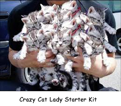 Crazy Cat Lady Starter Kits [Plus a Note to Animal Hoarders]