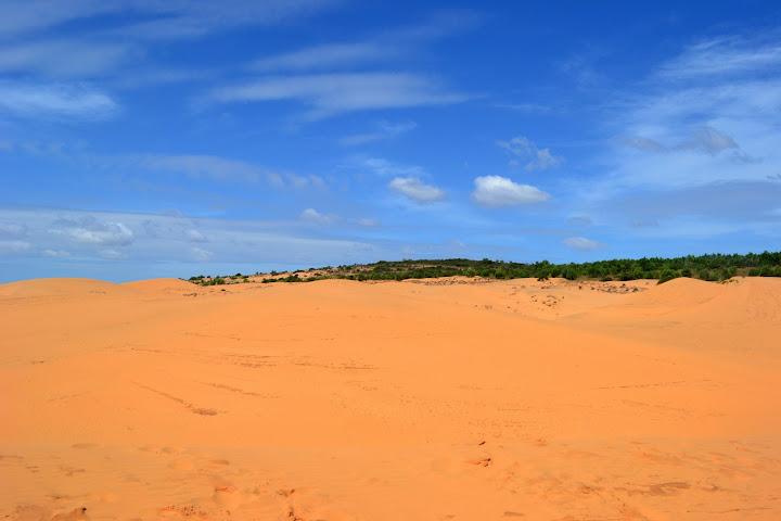 Желтые дюны