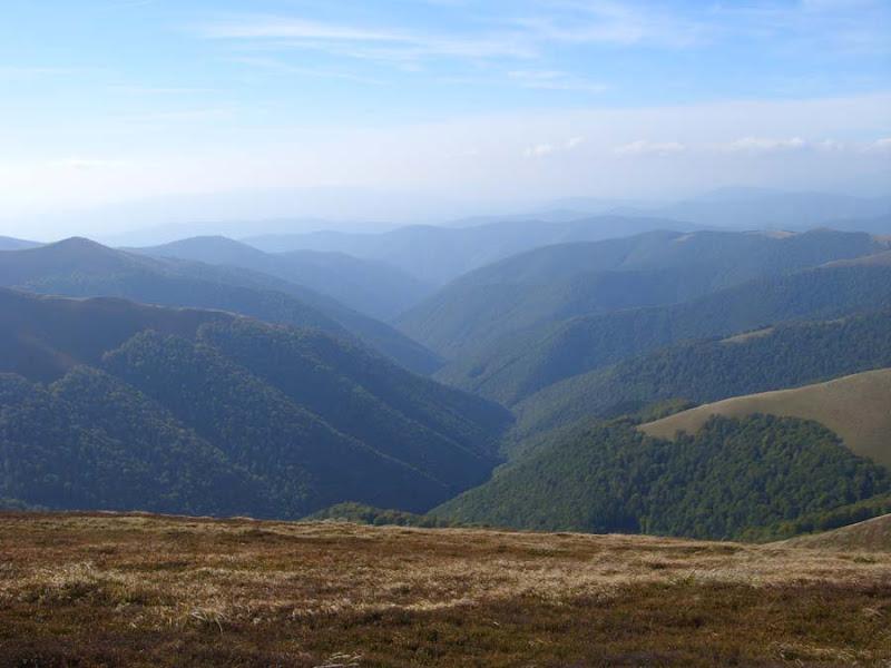 Украинские Карпаты в районе полонины Боржава и вершин Большой Верх и Гымба.