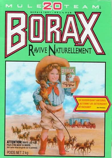 Penny Wise Women The Many Uses Of Borax