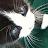 Mykhala Richner avatar image
