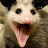 Mark Cliffe avatar image