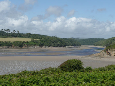 Erme Estuary low Tide