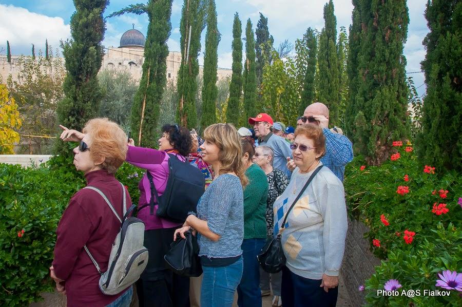 Экскурсия в Городе Давида. На заднем плане мечеть Аль Акса. Гид в Израиле Светлана Фиалкова.