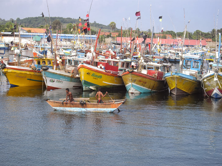 Port de Dikwella au Sri Lanka