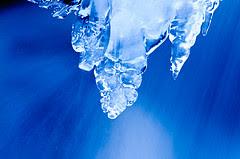 freeze.jpg